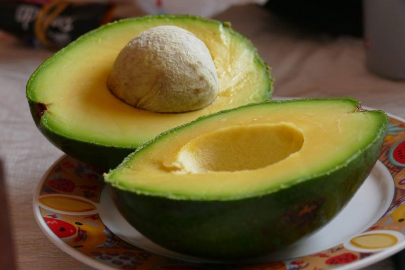 Ketogenic diet weight loss with Avocados.